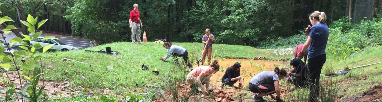 Volunteers plant rain garden in Godbold Park in Cary