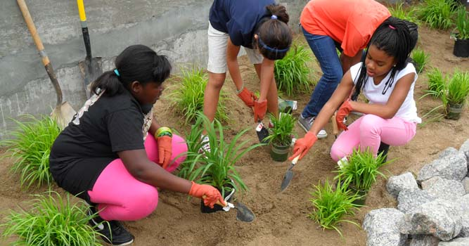 Burnt Mill Creek volunteers plant rain garden