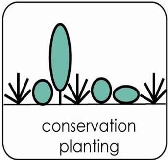 conservation planting logo