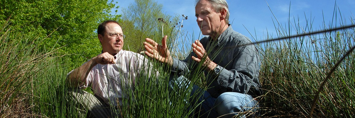 Researchers Mike Burchell and Doug Frederick look over restored wetlands on Centennial Campus. PHOTO BY ROGER WINSTEAD