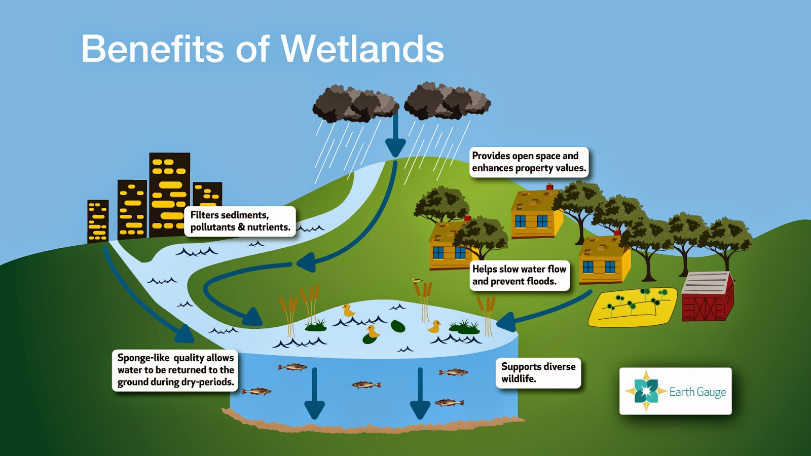 Walnut Creek Wetland Community Partnershipwater Resources