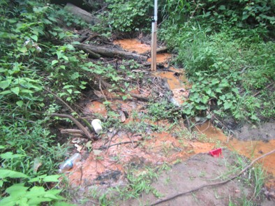 In Greenville, North Carolina, a seep contaminated by leaking petroleum tanks flows into a stream.