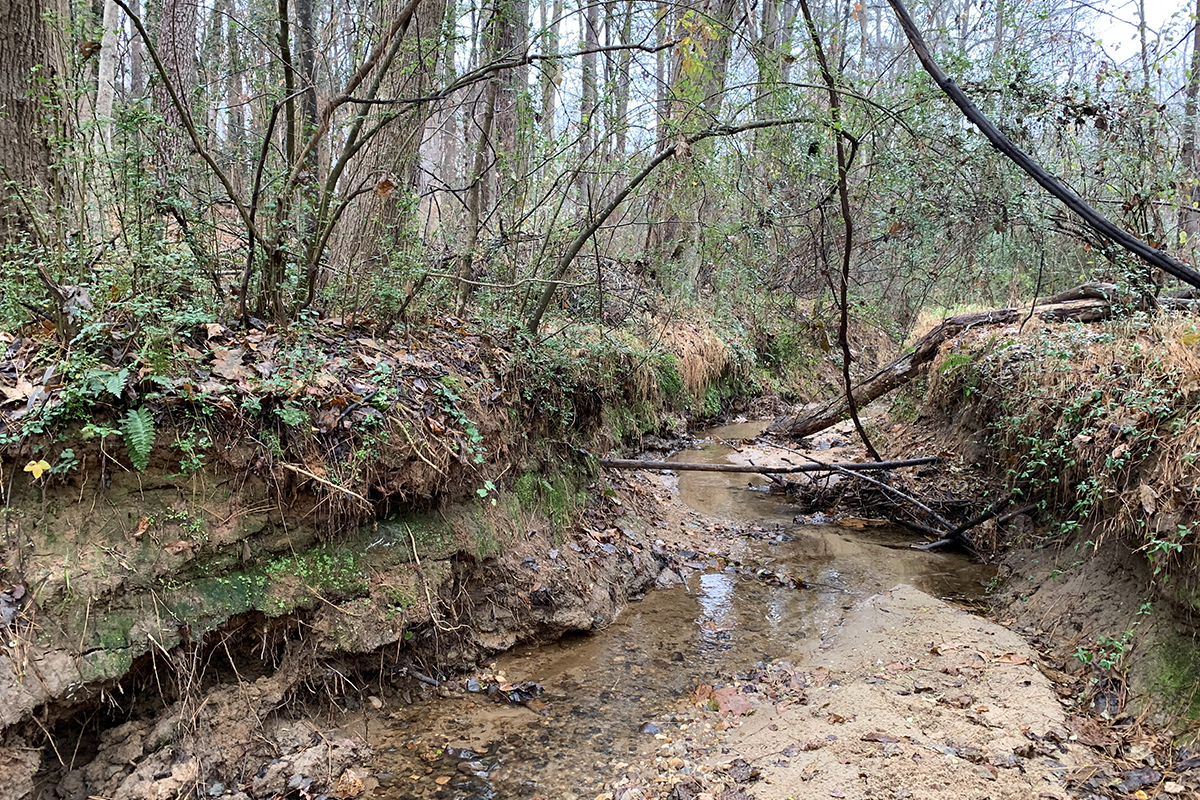 A section of Rochester Heights Creek